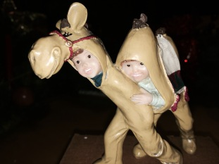 00 camel