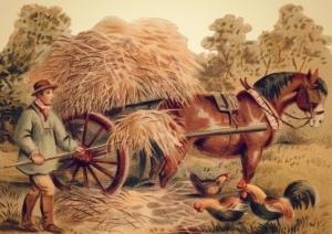 00 hay wagon