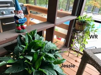 0 Jessie & WR