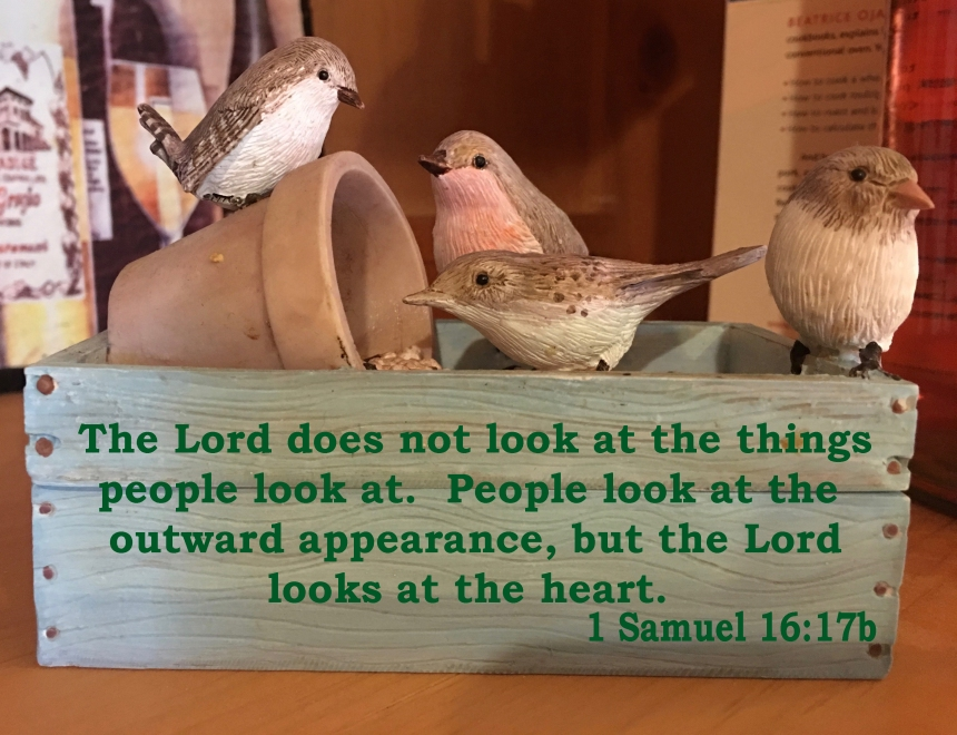 birds with verse