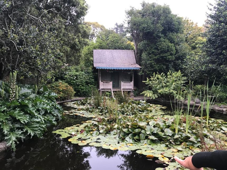 pond cabin